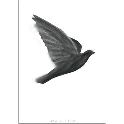 Vogel poster - Waterverf stijl - Interieur poster - Zwart wit poster - Free as a bird - A2 poster zonder fotolijst