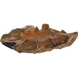 Drace Wood - 50.0 x 50.0 x 12.0 cm