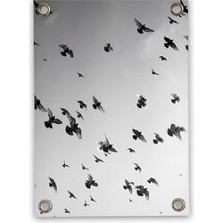 Tuinposter Vogels zwart wit (50x70cm)