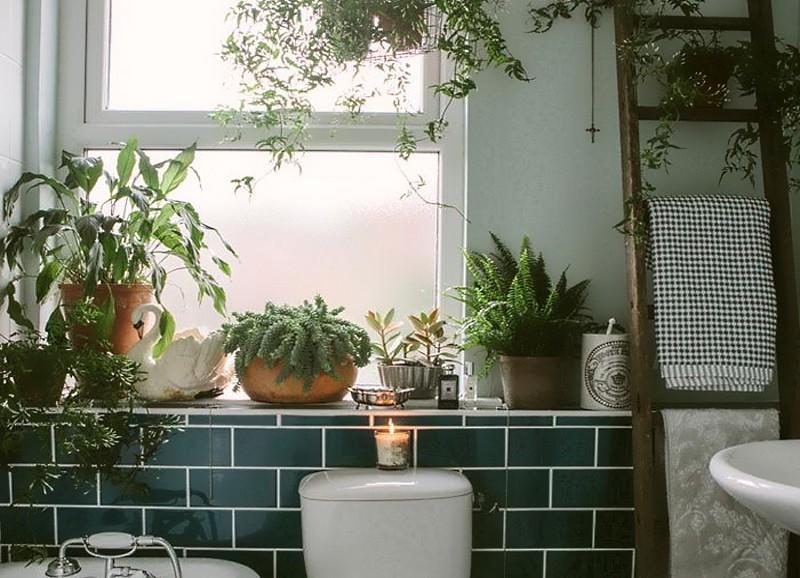welcome to the jungle im badezimmer alles was du brauchst um dein haus in ein zuhause zu. Black Bedroom Furniture Sets. Home Design Ideas