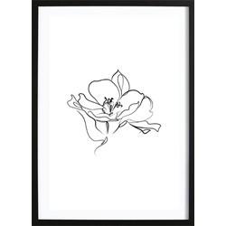 Line Flower Poster (21x29,7cm)