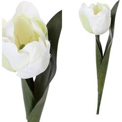 Tulip Flower - 14.0 x 6.0 x 19.0 cm