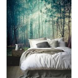 Zelfklevend behang XL Bomen met zon