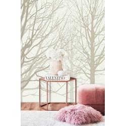 Vliesbehang XL Bomen beige wit 250x250 cm