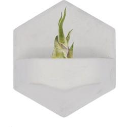 Valence Monoplanter Bloempot Beton 11,5 x 10 cm - Wit