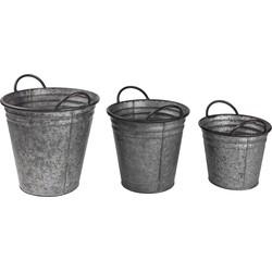 Deco-emmers Ahorn (3-delig) - zink - grijs, Wittkemper Living