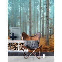 Vliesbehang XL Hoge bomen blauw grijs 300x250 cm