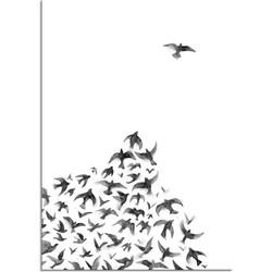 Zwerm vogels poster - Zwart wit poster - Hoek  - A3 + Fotolijst wit