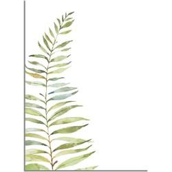 Varen blad poster - Wit - Puur Natuur Botanische poster - A4 + Fotolijst zwart