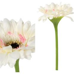 Gerbera Flower - 8.0 x 8.0 x 21.0 cm