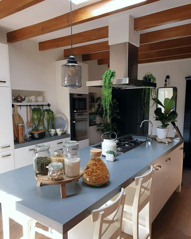 kamerplanten keuken