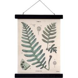 HKliving schoolkaart Botanisch