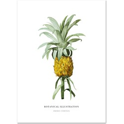 Poster 'Ananas' A4