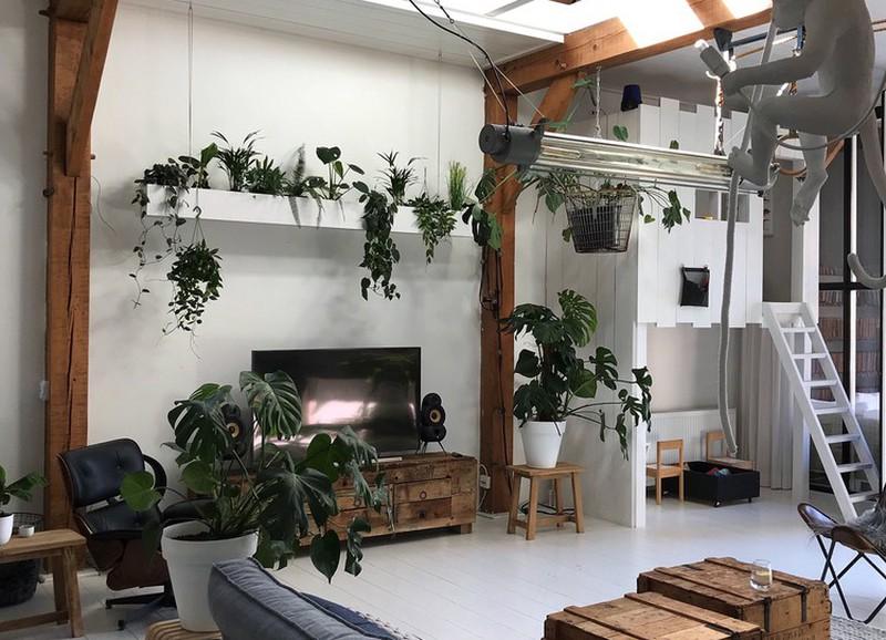 Urban Jungle Inspiratie : Shop the look: de urban jungle van jellina detmar alles om van je
