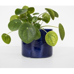 Handmade planter ceramic - Costa Azul