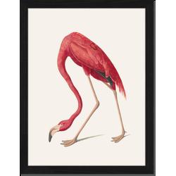 Vintage Flamingo - Fotoprint in houten frame - 30 X 40 X 2,5 cm