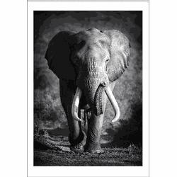 Elephant Spirit Animal (29,7x42cm)