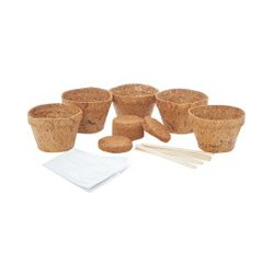 Gift Republic Grow Your Own Cactus