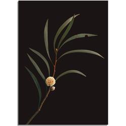 Tak met knop bloem poster DesignClaud  - Donker- A4 poster