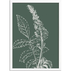 Vintage bloem blad poster Designclaud - Puur Natuur Botanical - Groen - A2 + Fotolijst wit