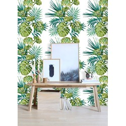 Vliesbehang Monstera jungle multicolour  122x122 cm