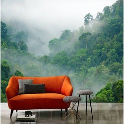 Zelfklevend behang XL Bomen wolken 300x250 cm