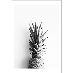 Pineapplecrown (21x29,7cm)