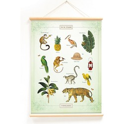 Little & Pure Praatplaat Poster 50 x 70 cm - Pimpelmees