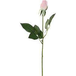 Rose Flower - 3.0 x 3.0 x 44.0 cm