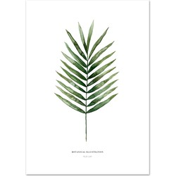Poster 'Palm Leaf' A3