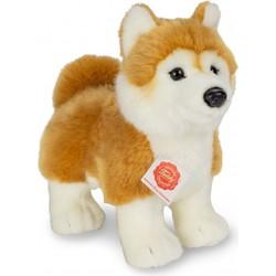Knuffel Hond Shiba Inu Staand - Hermann Teddy