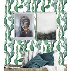 Zelfklevend behang Cactus groen wit 2 122x275 cm