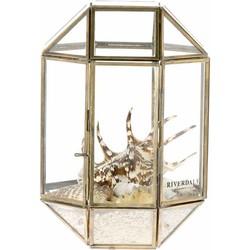 Terrarium box Belton goud 26cm