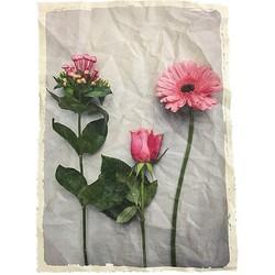 Mo-Ca Voorjaar Poster A3 - bloem roze 3