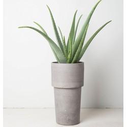 Urban Pot (Ø24)
