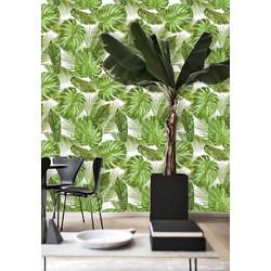 Zelfklevend behang Monstera exotisch groen wit 122zx244 cm