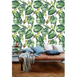 Vliesbehang Monstera groen wit 60x122 cm