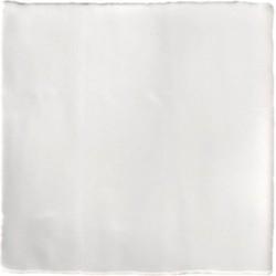 Wandtegel Terre d'Azur Porto 10x10cm licht grijs 1 ST