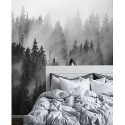 Zelfklevend behang Mistige vallei grijs 300x250