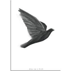 Vogel poster - Waterverf stijl - Interieur poster - Zwart wit poster - Free as a bird - A2 + Fotolijst wit