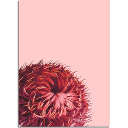 Rode bloem poster DesignClaud - Bloemstillevens- Rood- A3 poster
