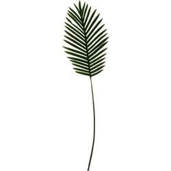 Set v 2 Kunst Palmbladen-23x80cm-Housevitamin