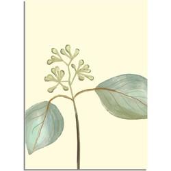 Zaadjes blad poster - Beige - Puur Natuur Botanische poster - A3 poster zonder fotolijst