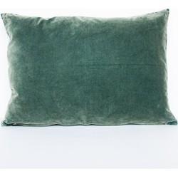 Cushion - Vintage velvet silver pine