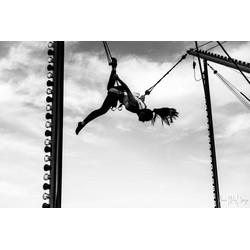 """Free!"" op Dibond 120cm"