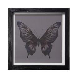 Linea Butterfly print frame