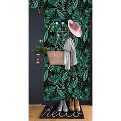 Zelfklevend behang Exotische planten groen zwart 60x244 cm