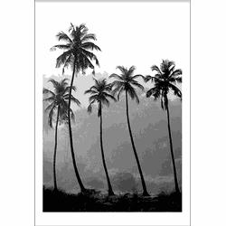 Palmtree Squad (70x100cm)