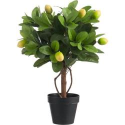 Nep Kunstplant Citroenboom