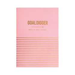 Alice Scott Agenda Planner, Blush Pink